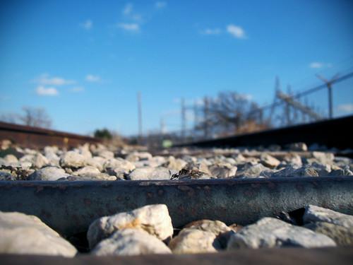 Railroad:  January 17, 2009