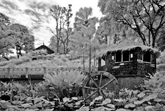 Shelter and Water Mill (Dannie Tj. - ) Tags: bw singapore d70s infrared pictureperfect estremit earthasia flickrlovers goldieirfilter590nm