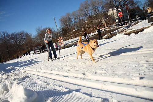 Skijoring Loppet 8855