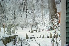 View of second tier of yard (junebug_1944) Tags: icestorm eurekaspringsar january2009