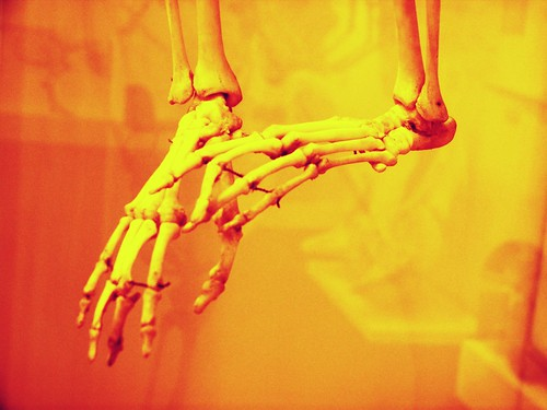Skeletal feet