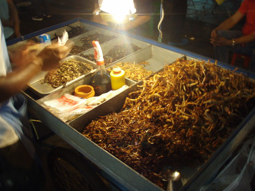 Deep Fried Bugs, Khao San Road, Bangkok, Thailand