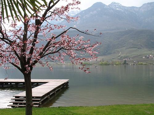 Frühjahrserwachen am Kalterer See mit Blick in Richtung St. Josef am See