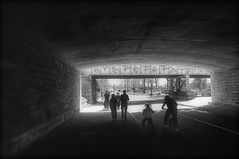 Under the Highway, After the Cherry Blossom Festival (andertho) Tags: delete10 delete9 delete5 delete2 dc washington delete6 delete7 save3 delete8 delete3 delete save save4 cherryblossom dcist save5 cherryblossomfestival
