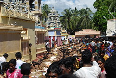 Kali Festival 289 (drs.sarajevo) Tags: festival hinduism trincomalee kalitemple
