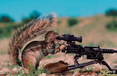 Spokane Squirrel Resistance Army