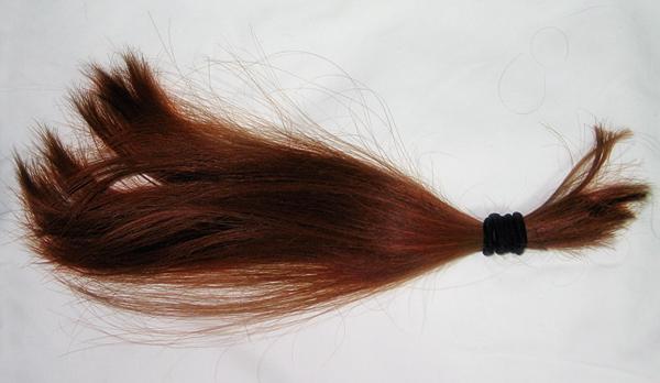Hair Cut 4/28/09: The Ten Inches