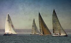 The Regatta (paul g*) Tags: sea painterly water boats nikon sailing textures regatta sailboats 70300mm longislandsound aplusphoto d700 texturebyamyhiggins texturebylesbrumes
