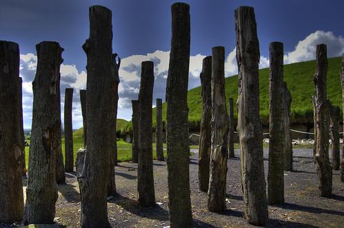 Woodhenge 5000