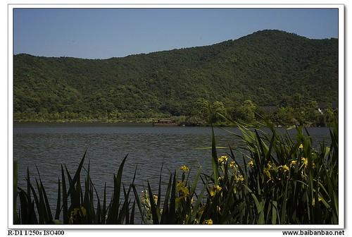 xiang-lake-shuixian-7205