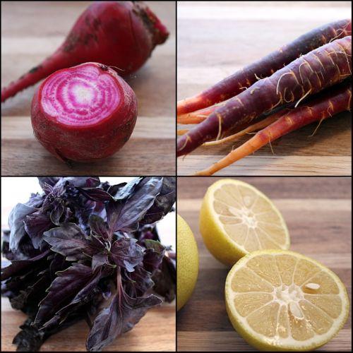 basil, chiogga beets, opal basil, purple carrots