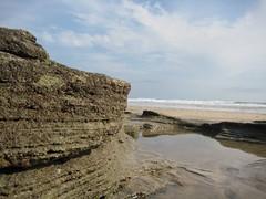 Cliff (pkalo) Tags: cliff costa macro rock playa rica roca acantilado guanacaste avellanas