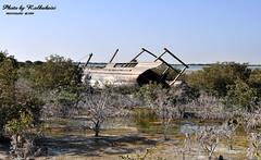 Shipwreck (RASHID ALKUBAISI) Tags: sky color nikon ship top sae shipwreck f28 doha qatar rashid photogroup راشد 2470mm d90 alkubaisi الكبيسي flickrlovers ralkubaisi