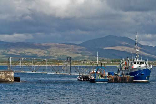 Fishing boat in Ardmucknish Bay, near Oban, Scotland