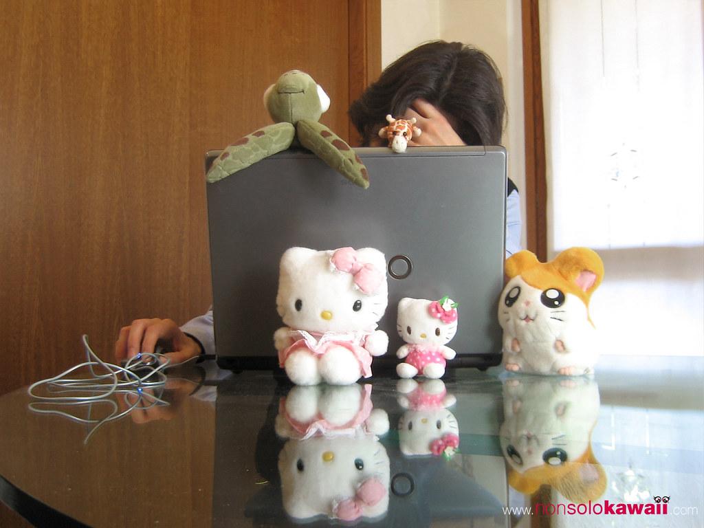 Kawaii's Boyfriend: Shopping online disaster