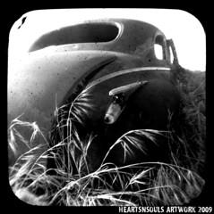 Rust 2009 (HeartsnSouls) Tags: junk rust ttv throughtheviewfinder kodakdualfexii