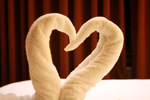 Carnival Elation -  Towel Creations - Swans