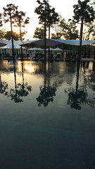 The Oasis (durikom) Tags: oasis banyantree the lx3