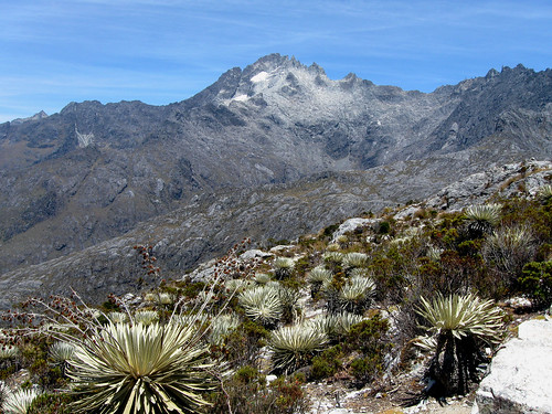 Pico Bolivar por Erik Cleves Kristesen en Flickr