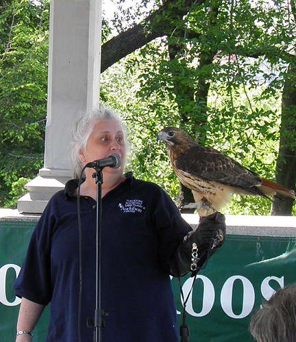 Theodore Roosevelet Sanctuary Hawk Talk