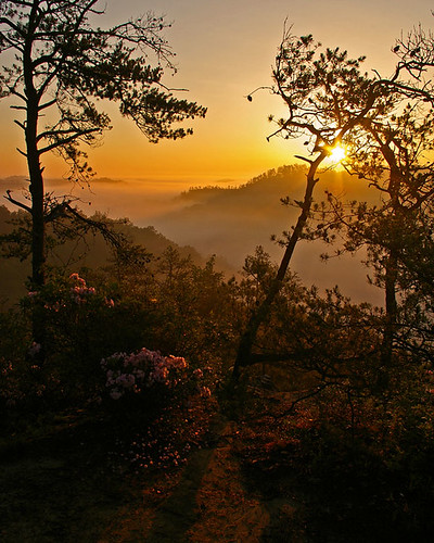 Settimi Point sunrise in Red river gorge, KY This shot won 2nd prize in the KET spring photocontest.