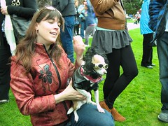 Adina and Tucker (thescruffydog09) Tags: show dog chihuahua rock star treats tucker victoriabc scruffy barkery theroyals thefairmontempress kateandwilliam theroyaldogshow clubpawz