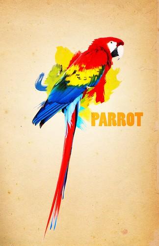 PARROT2.