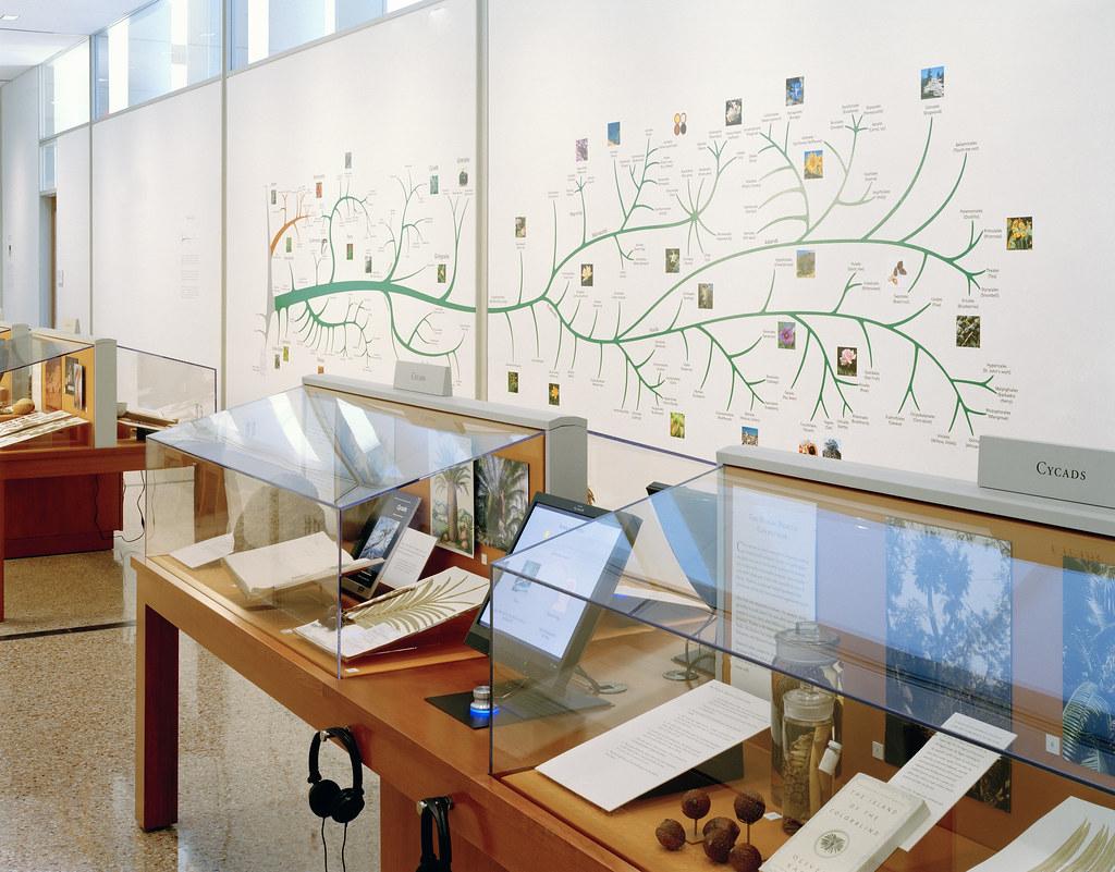 Britton Science Gallery
