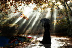 The Gentle Walk, Of Life (Poe Tatum) Tags: park woman sun sunlight black bird mushroom water grass female umbrella cat photoshop dress image lace creative manipulation edit astounding smrgsbord photoshopers
