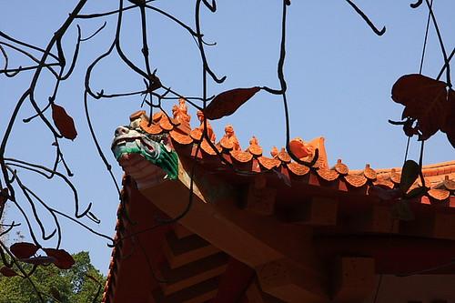 嘉義公園孔廟07