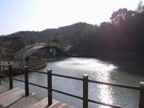二上山ふるさと公園-090205-01