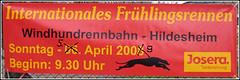 Windhund Frühlingsrennen Hildesheim 2009