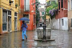 Blue Day (womanish) Tags: street venice houses man rain umbrella walk well venezia
