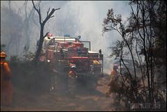 Peats Ridge Bushfire (In the Smoke) Tags: summer fire smoke nsw heat centralcoast tanker bushfire rfs peatsridge nswfb