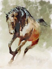 Horse 003 (piker77) Tags: horse painterly art animal digital photoshop watercolor painting interesting media natural aquarelle digitale manipulation simulation peinture illusion virtual watercolour transparent acuarela tablet technique wacom stylized pintura imitation  aquarela aquarell emulation malerei pittura virtuale virtuel naturalmedia    piker77wc arthystorybrush
