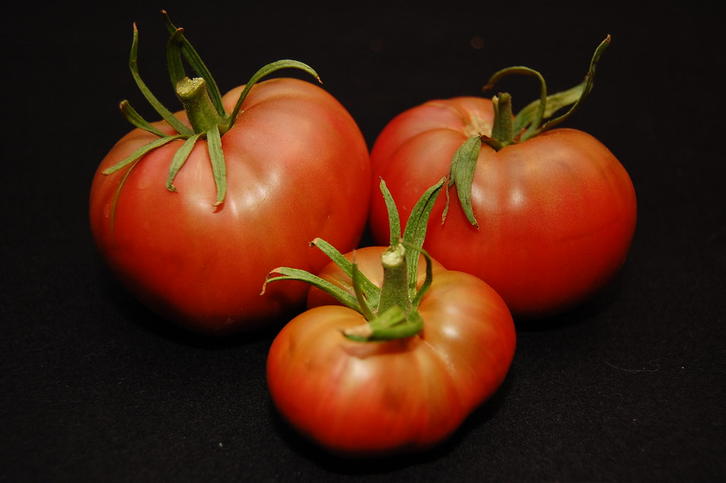 3 ripe cherokee purple tomatoes