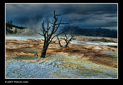 Yellowstone National Park - Patrick Leitz