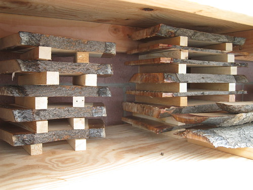 sticked slabs in my wood storage shelving