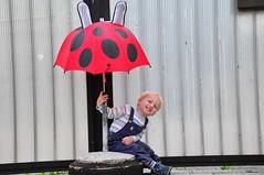Leiutis (anuwintschalek) Tags: summer home june umbrella austria sommer vivid ladybug tor kalle 2009 kodu suvi marienkfer regenschirm wienerneustadt lapsed mng lepatriinu nikond90 vrav vihmavari 18105vr leiutis