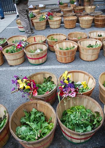 may :: local grown love