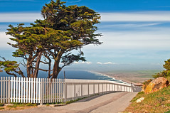 HFF! (TMullenaux) Tags: ocean tree beach fence pacific path cyprus pointreyes whitepicketfence pointreyesnationalseashore