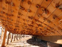 Lenj (A Big Boat) (Mahsa3611) Tags: wood sea water boat poem iran ایران mahsa sohrab lenj sepehri لنج قایق genaveh مهسا گناوه mahsa3611