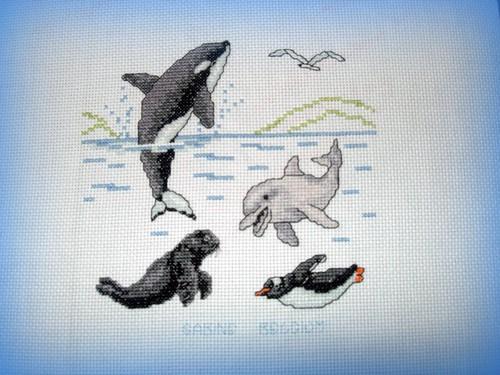 Orca et ses amis