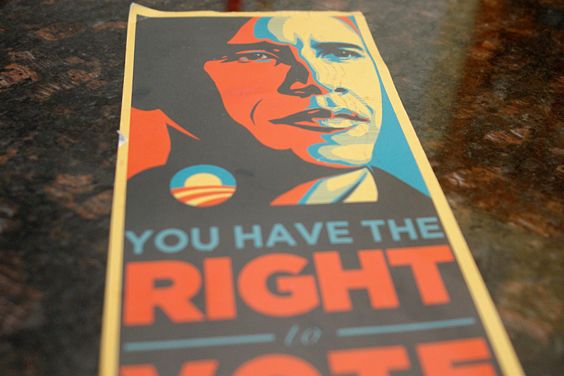 you have the right to vote