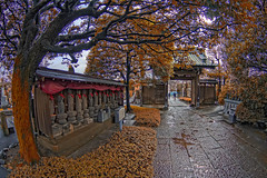 Tokyo Cemetery (/\ltus) Tags: cemetery japan tokyo pentax handheld freehand hdr saginomiya otera notripodused 5xp japanhdr k20d