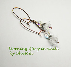 morningglory-white 2