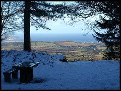 View to fine (ExeDave) Tags: wood uk winter sea england snow forest woodland landscape coast afternoon forestry devon plantation gb viewpoint 2009 conifers conifer febraury haldon exe mamhead blueribbonwinner forestrycommission exeestuary haldonforest teignbridge exevalley haldonhills greathaldonforest mamheadobelisk haldonforestpark coniferplantation mamheadwoods greathaldon mamheadpoint manheadforest mamheadviewpoint obeliskpoint