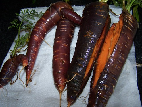 Misshaped Carrots