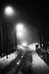 The lights of the winter night (B/W) (Svajen) Tags: winter light white snow black cold color rain night dark nikon d slush handheld 80 styrso dons styrs skrgrden d80 nikond80 donso svajen wanderinggypsies