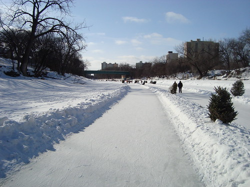 the Winnipeg river trail winds down the frozen Assiniboine River.
